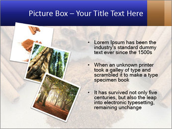 0000082241 PowerPoint Templates - Slide 17