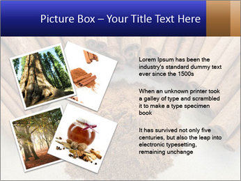 0000082241 PowerPoint Templates - Slide 23
