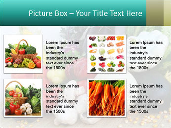 0000082252 PowerPoint Template - Slide 14