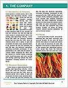 0000082252 Word Template - Page 3