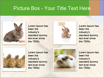 0000082254 PowerPoint Templates - Slide 14