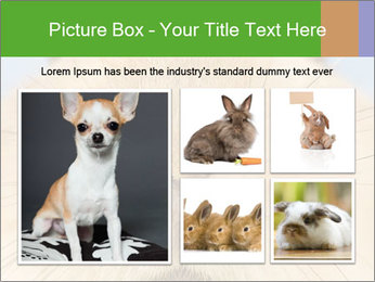 0000082254 PowerPoint Templates - Slide 19