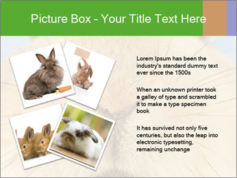 0000082254 PowerPoint Templates - Slide 23