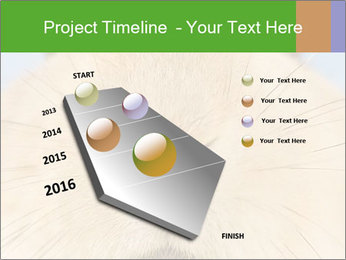 0000082254 PowerPoint Templates - Slide 26