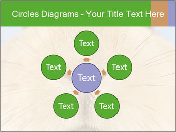 0000082254 PowerPoint Templates - Slide 78