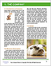 0000082254 Word Templates - Page 3
