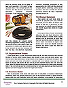 0000082270 Word Template - Page 4