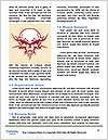 0000082274 Word Template - Page 4