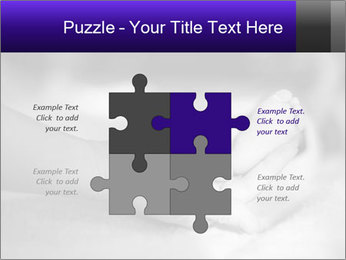 0000082288 PowerPoint Template - Slide 43