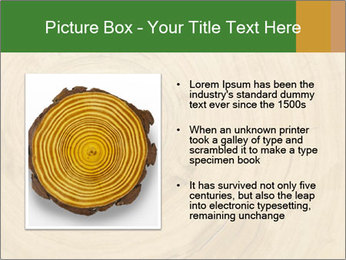 0000082294 PowerPoint Template - Slide 13