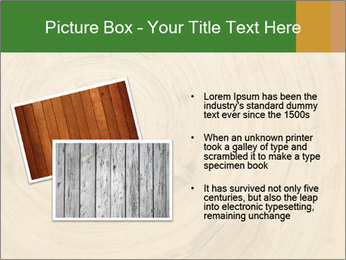 0000082294 PowerPoint Template - Slide 20