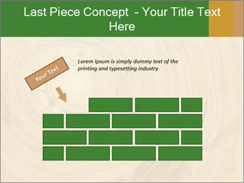 0000082294 PowerPoint Template - Slide 46