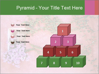 0000082295 PowerPoint Templates - Slide 31