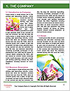 0000082295 Word Template - Page 3