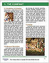 0000082300 Word Templates - Page 3