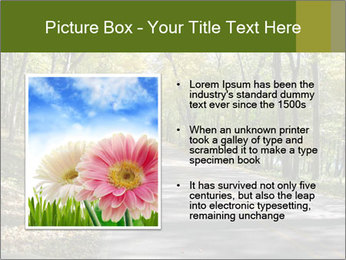 0000082304 PowerPoint Template - Slide 13