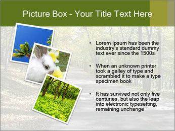 0000082304 PowerPoint Template - Slide 17
