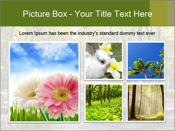 0000082304 PowerPoint Template - Slide 19