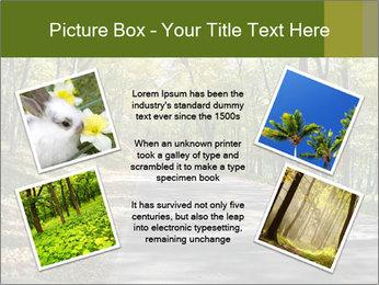 0000082304 PowerPoint Templates - Slide 24