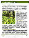 0000082304 Word Template - Page 8