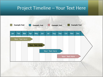 0000082311 PowerPoint Templates - Slide 25