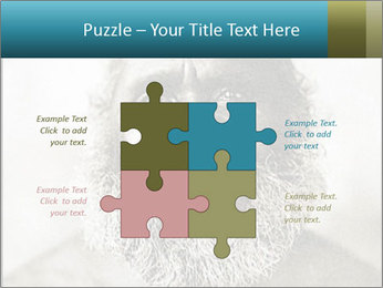 0000082311 PowerPoint Templates - Slide 43