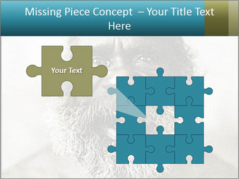 0000082311 PowerPoint Templates - Slide 45
