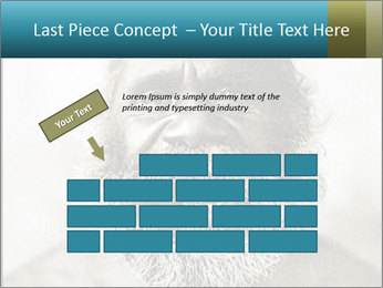 0000082311 PowerPoint Templates - Slide 46