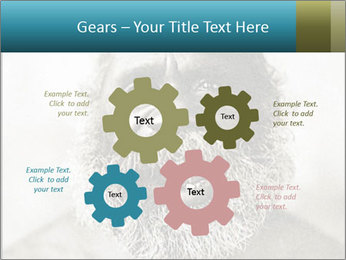 0000082311 PowerPoint Templates - Slide 47