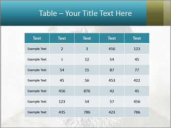 0000082311 PowerPoint Templates - Slide 55