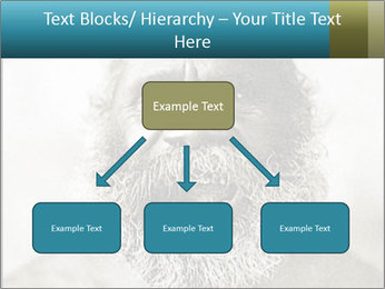 0000082311 PowerPoint Templates - Slide 69