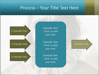 0000082311 PowerPoint Template - Slide 85