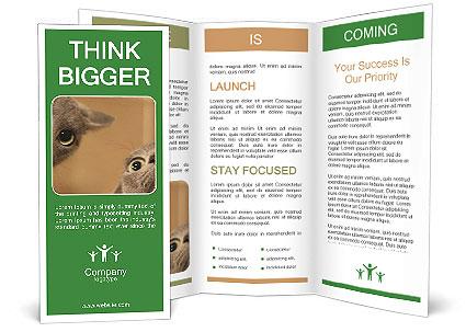 0000082312 Brochure Template