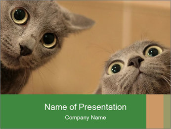 0000082312 PowerPoint Template