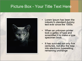 0000082312 PowerPoint Templates - Slide 13