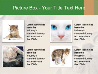 0000082312 PowerPoint Templates - Slide 14