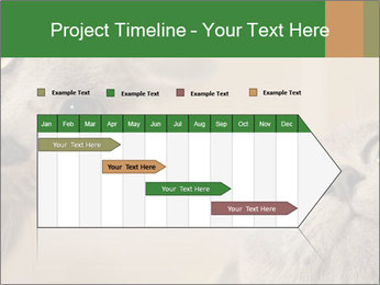 0000082312 PowerPoint Templates - Slide 25