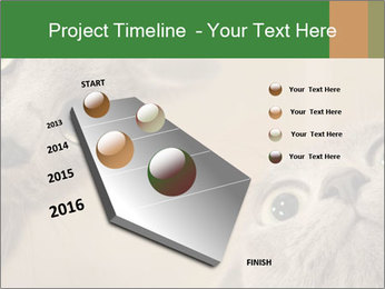 0000082312 PowerPoint Templates - Slide 26