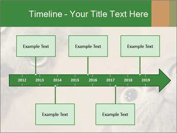 0000082312 PowerPoint Templates - Slide 28