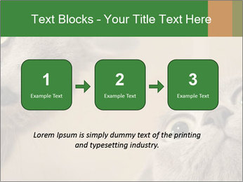 0000082312 PowerPoint Templates - Slide 71
