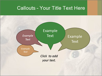 0000082312 PowerPoint Templates - Slide 73
