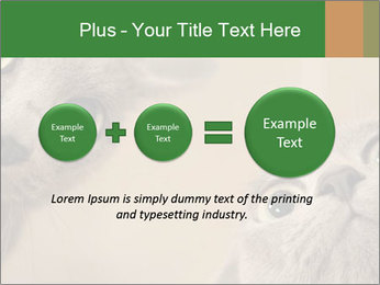 0000082312 PowerPoint Templates - Slide 75