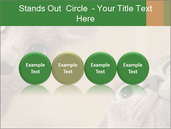 0000082312 PowerPoint Templates - Slide 76