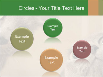 0000082312 PowerPoint Templates - Slide 77