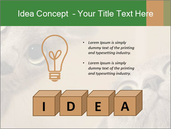 0000082312 PowerPoint Templates - Slide 80