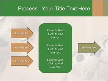 0000082312 PowerPoint Templates - Slide 85