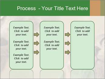 0000082312 PowerPoint Templates - Slide 86
