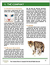 0000082312 Word Template - Page 3