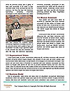 0000082316 Word Template - Page 4