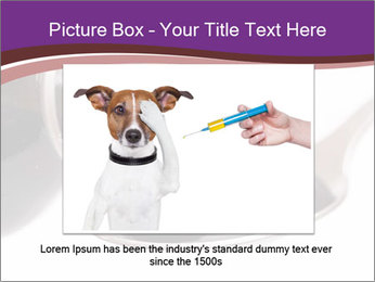0000082318 PowerPoint Template - Slide 15
